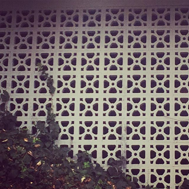 Groovy breeze block next door to job. I like it! #midcenturymodern#breezeblock#modernlandscape#modernlandscapedesign#vintagegarden