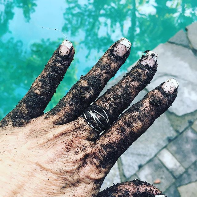 Gloves? I don't need gloves! Gung hoe style always! #gardening#gardengloves#digginginthedirt#worms#gardengals#womenwhogarden#gunghoegals