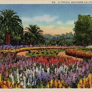 "Super Bloom 19 teens postcard. Rather formal ""ribbon bedding."" #formalgardens#landscapehistory#losangelesgardens#oldlosangeles#gardenstyles#victoriangardens"