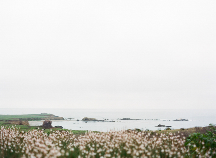 Big Sur Film Photographer-1