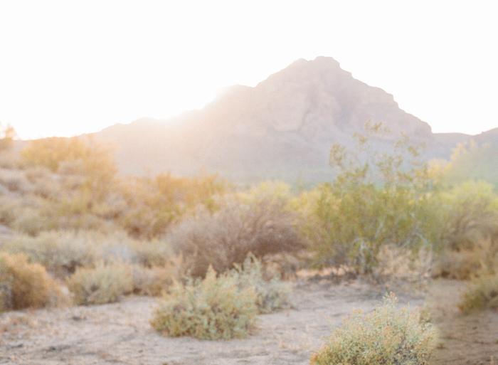 Phoenix Wedding Photographer-1
