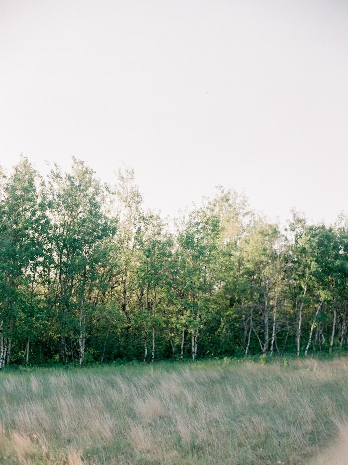 Birds Hill Park.jpg