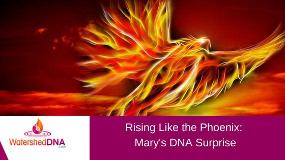 rising like the phoenix.png