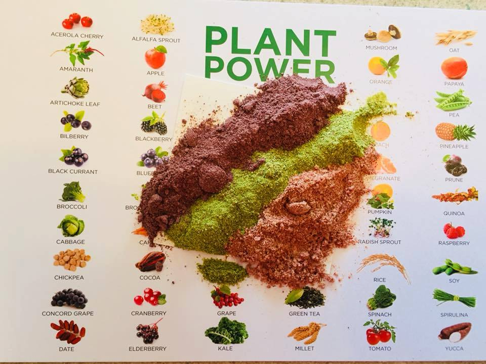 Harvest, freeze, juice, dry, crush, QC, and mix into fruit, vegetable, and berry blends.