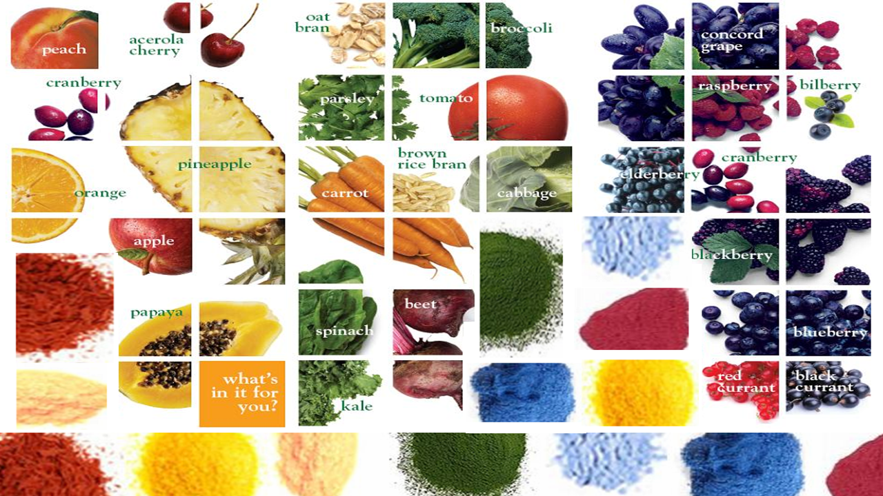 The sense and science of plant (produce) powders