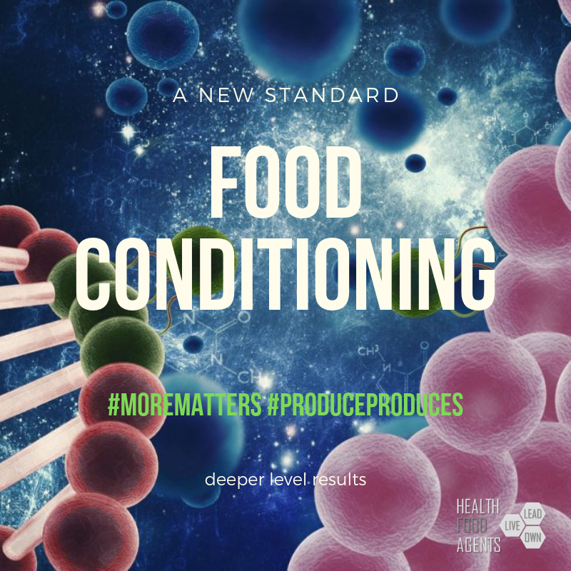 food conditioning results (4).png