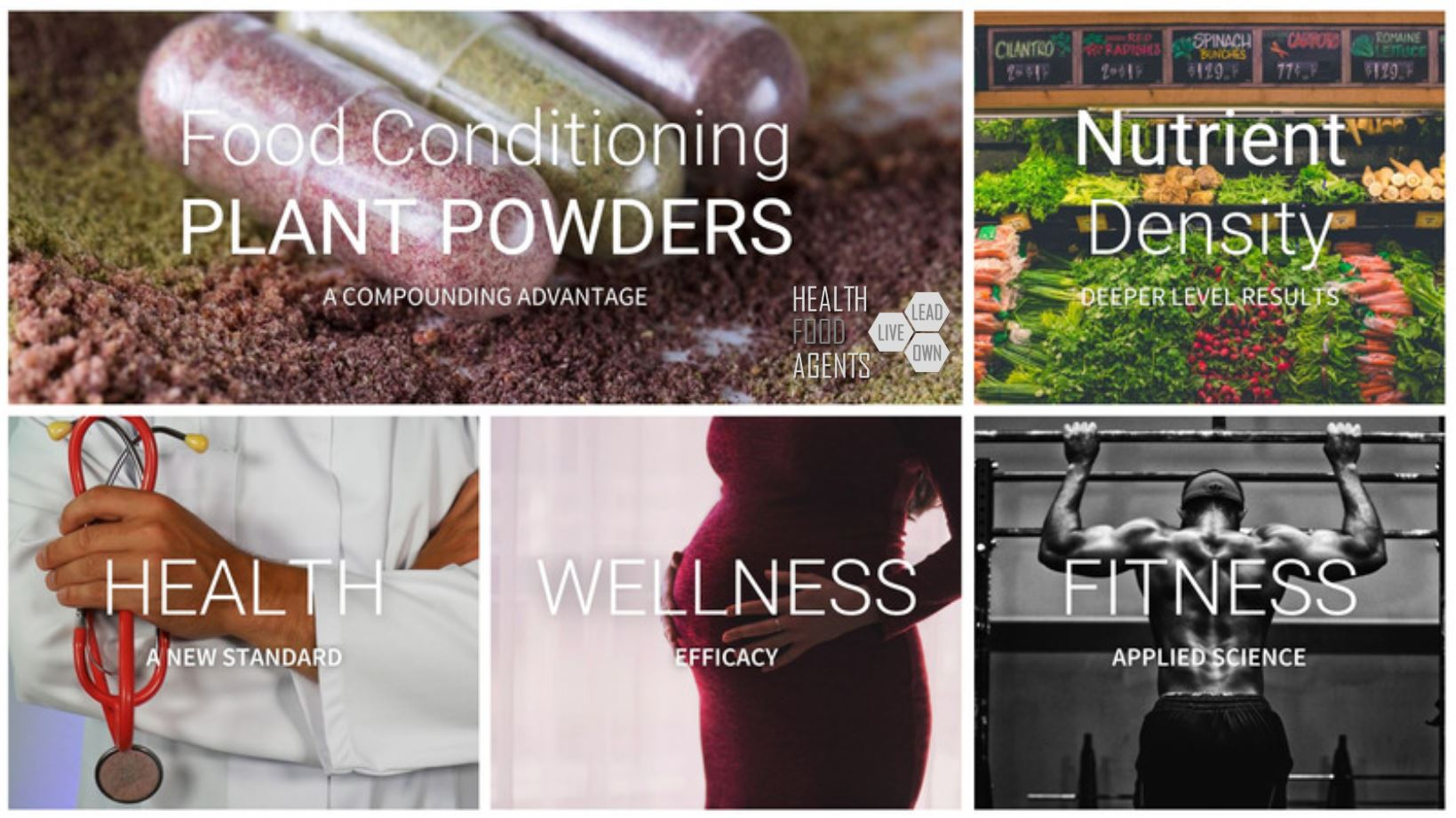 Plant powders daily conditions anyone