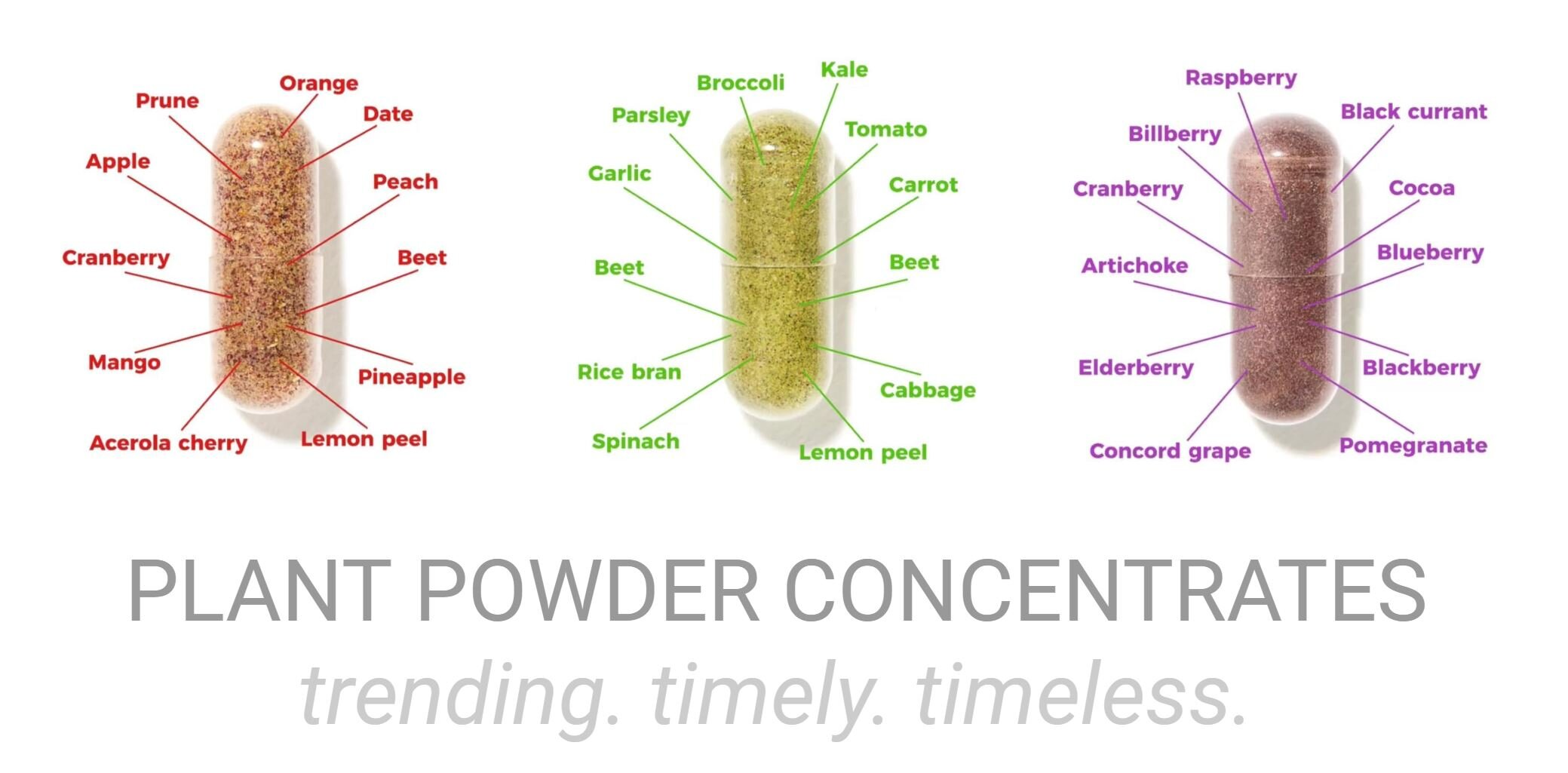 PLANT POWDER CONCENTRATES.JPG