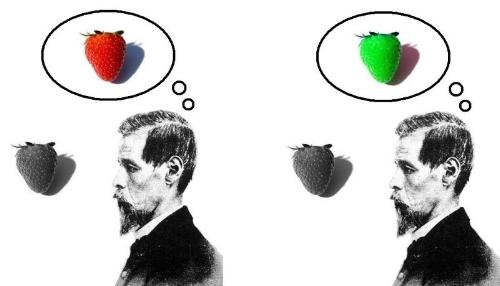 Verbos de percepción: ver, mirar, imaginar