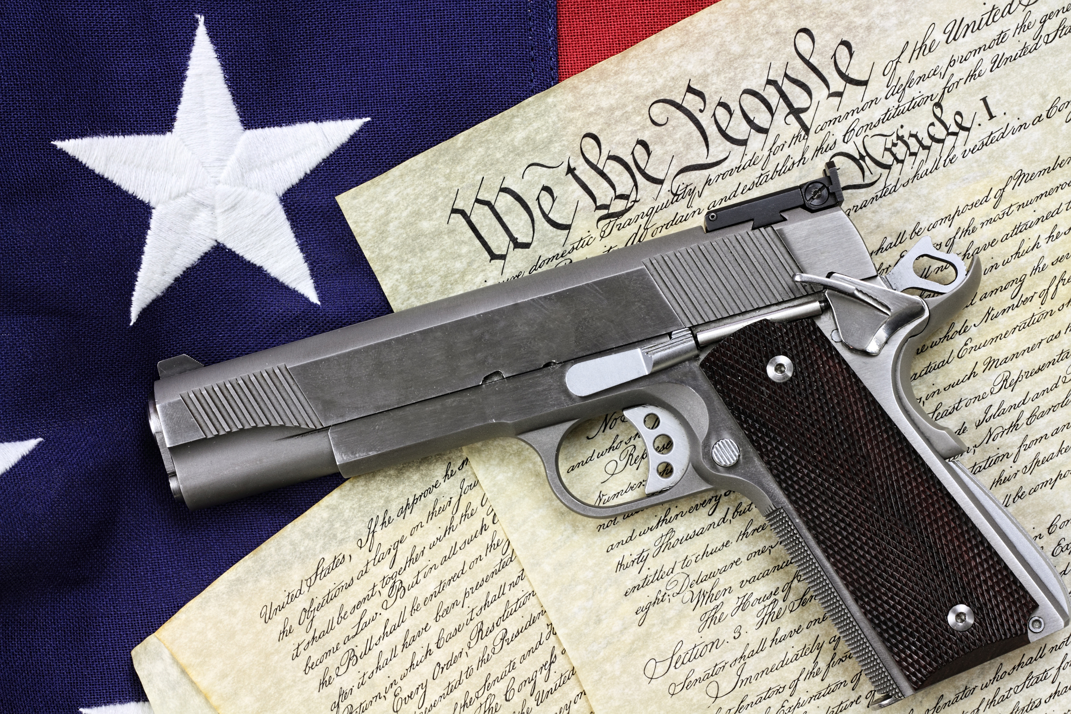 The right of the people to keep and bear arms shall not be infringed. -