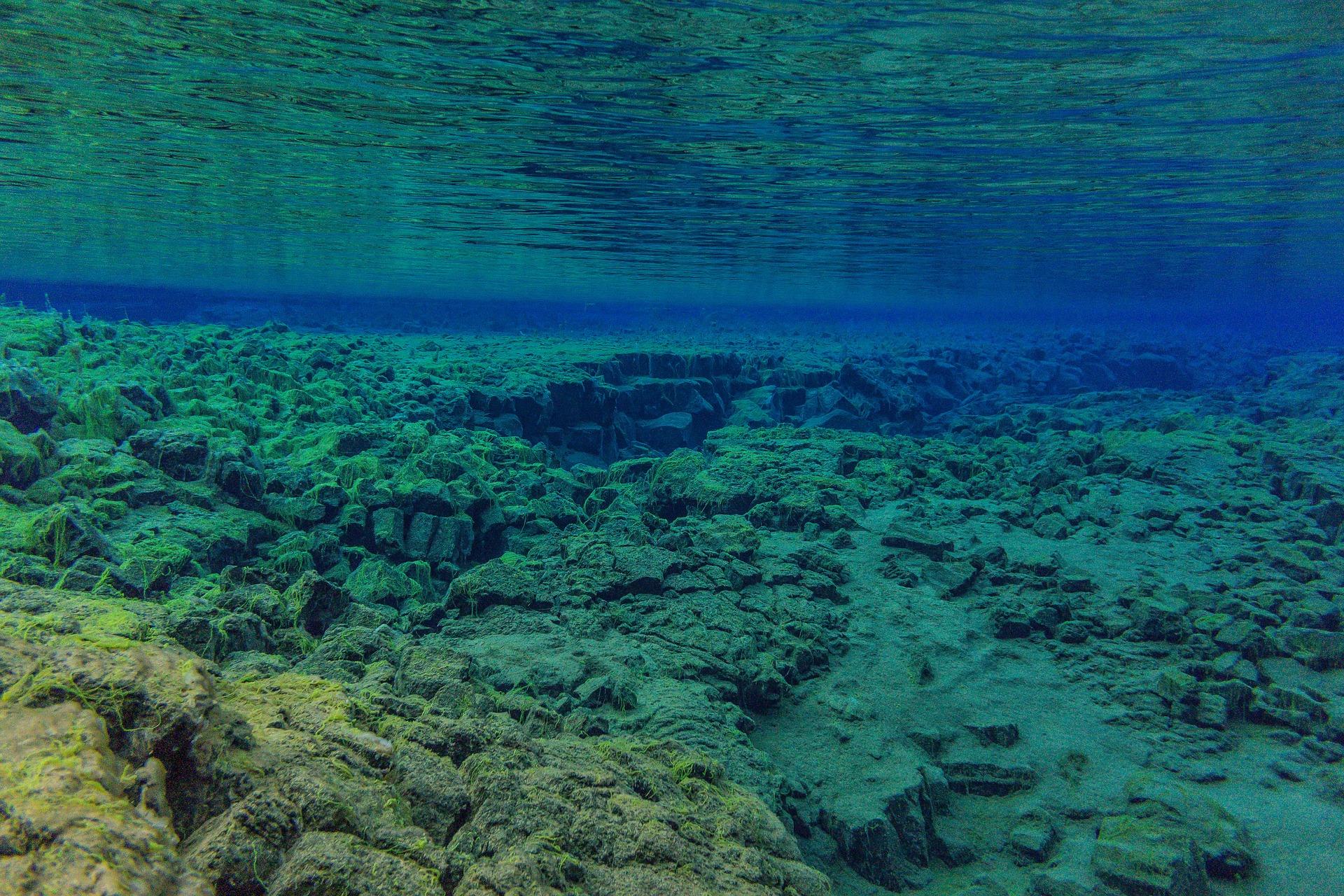 underwater-3237936_1920.jpg