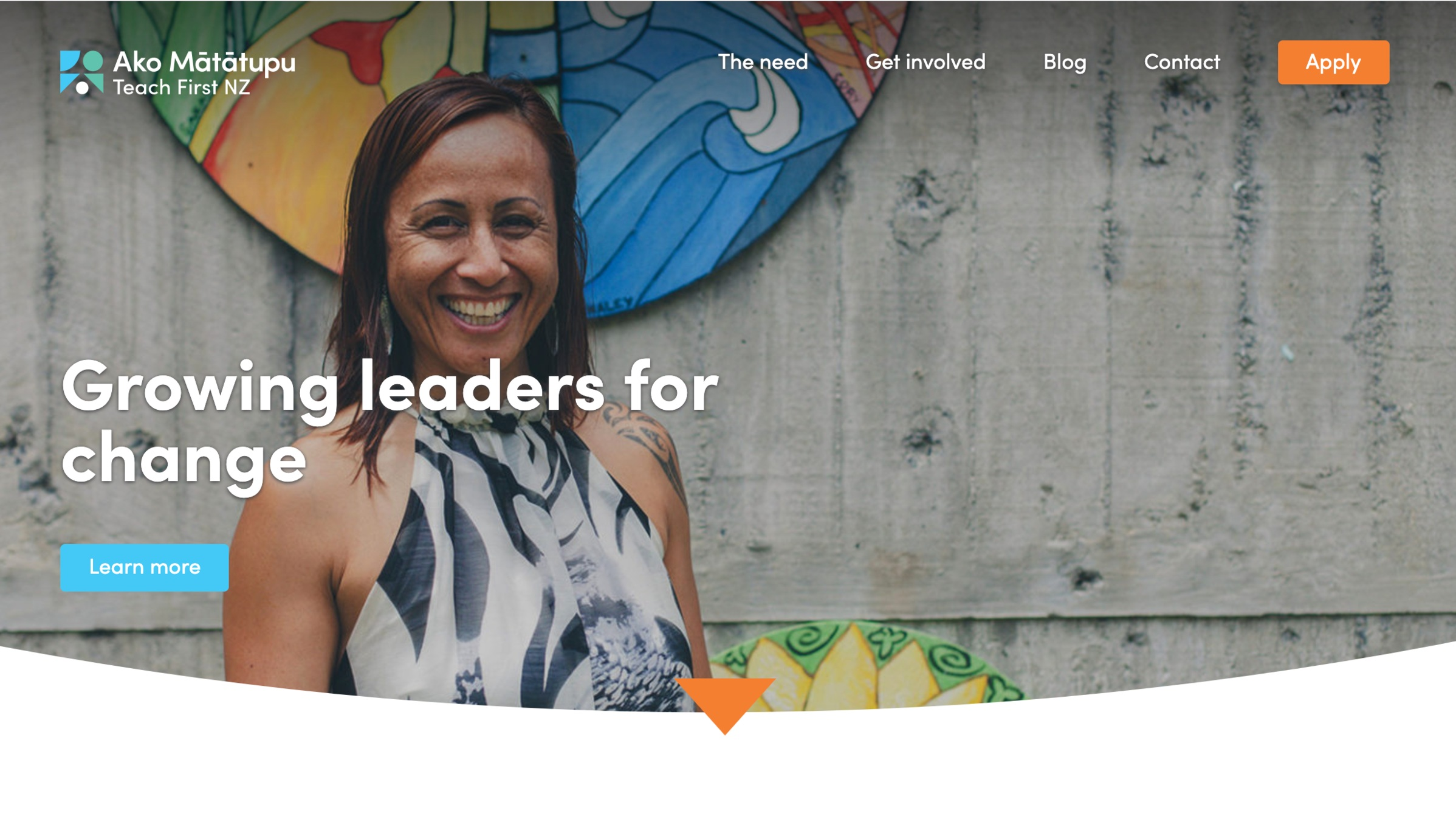 Case D ('Teach First' based in Great Britain and also in NZ) - A teaching and education leadership programme which creates initiatives for teachers to accept roles in secondary schools serving a low-income community over two years, by paying for their Masters qualification.
