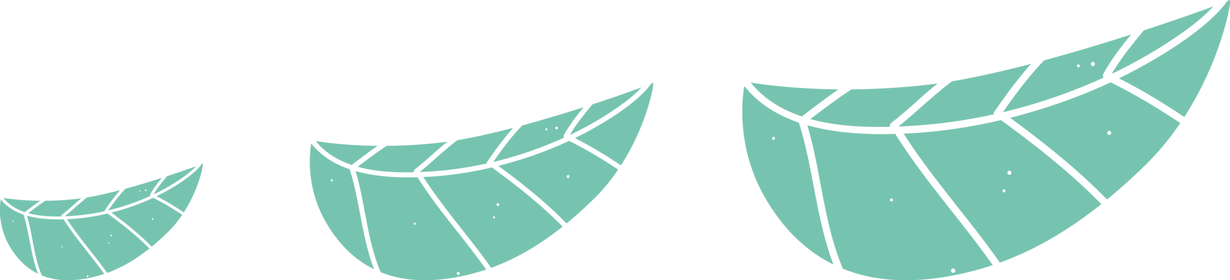 bird-wing-element.png