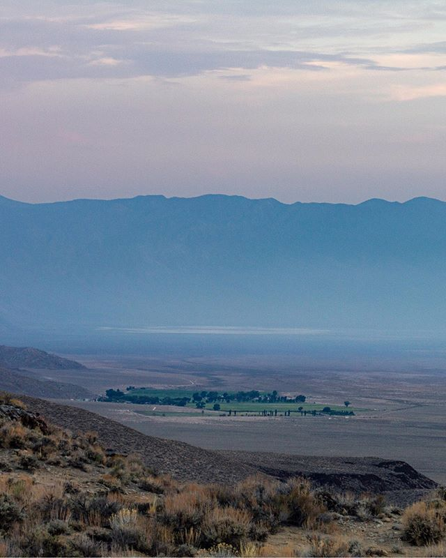 An oasis, a dried salt lake, the Inyo Mountains, stunning sunsets and windy roads. Deep Springs Valley has it all. . . . #desertlife🌵 #desert #californiaadventure #visitcalifornia #inyonationalforest #inyocounty #californialife #oasis #californiaroadtrip #californiacaptures #optoutside