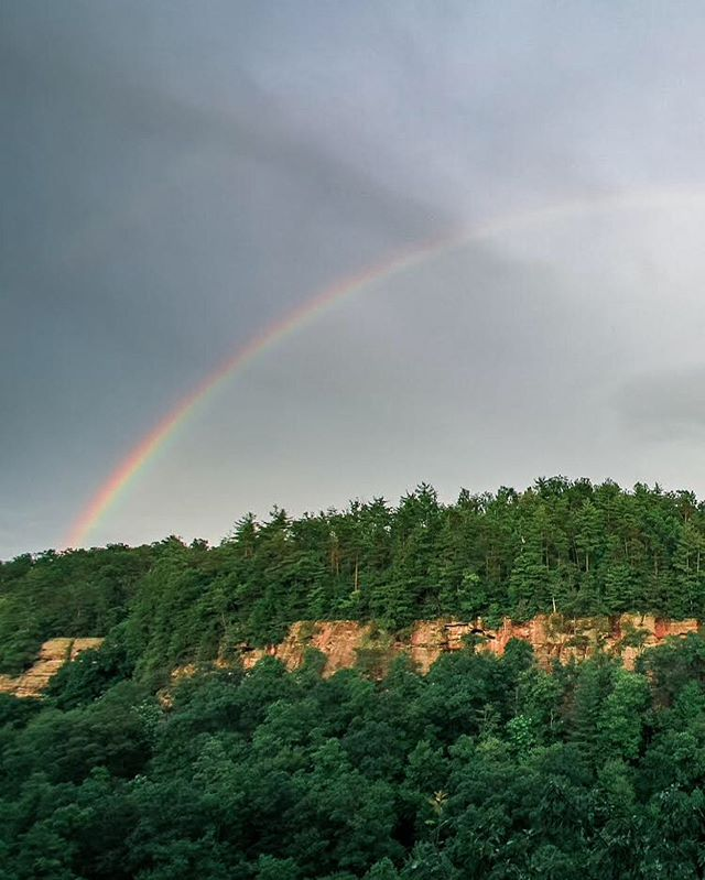 Summer views at the Red River Gorge . . . #kentucky #onlyinkentucky #explorekentucky #travelky #kystateparks #redrivergorge #redrivergorgeous #rainbow #rainbow🌈 #kentuckyforkentucky
