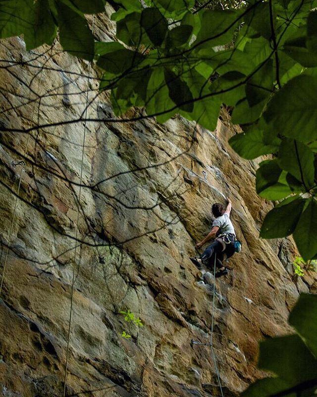 Here's a rare photo of me climbing from a few years ago, thanks to @batsoup . . . #browngirlsclimb #flashfoxy #rockclimbing #climbing #womenoutdoors #climbingwomen #newrivergorge #gogalavanting #rockclimbingwomen #womenwhoclimb