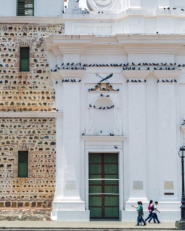 Santa Fe de Antioquia was hot. These birds agree . . . #colombiatravel #travelgrafia #visitcolombia #canon #canonusa #teamcanon #mycanonstory #zoomavianca #santafedeantioquia #antioquia #colombiagrafia #colombiaessabrosura #realismomagico #colombiarealismomagico