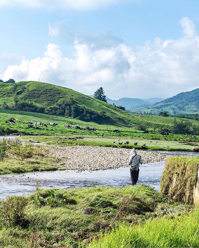 A man fishing for trouts in Belmira, Antioquia . . .  #colombiatravel #travelgrafia #visitcolombia #canon #canonusa #teamcanon #mycanonstory  #highaltitude  #colombiagrafia #colombiaessabrosura #realismomagico #fishing #troutfishing #colombiarealismomagico
