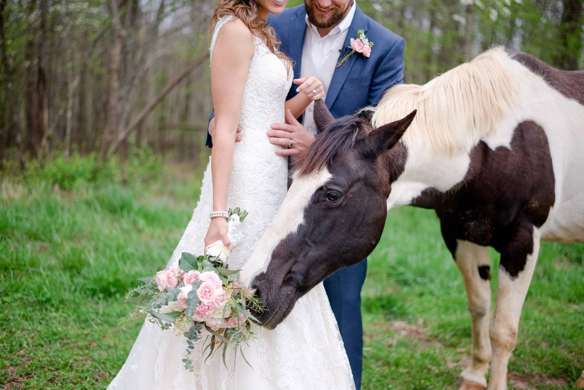Mystic Connecticut backyard wedding with horses_0061.jpg
