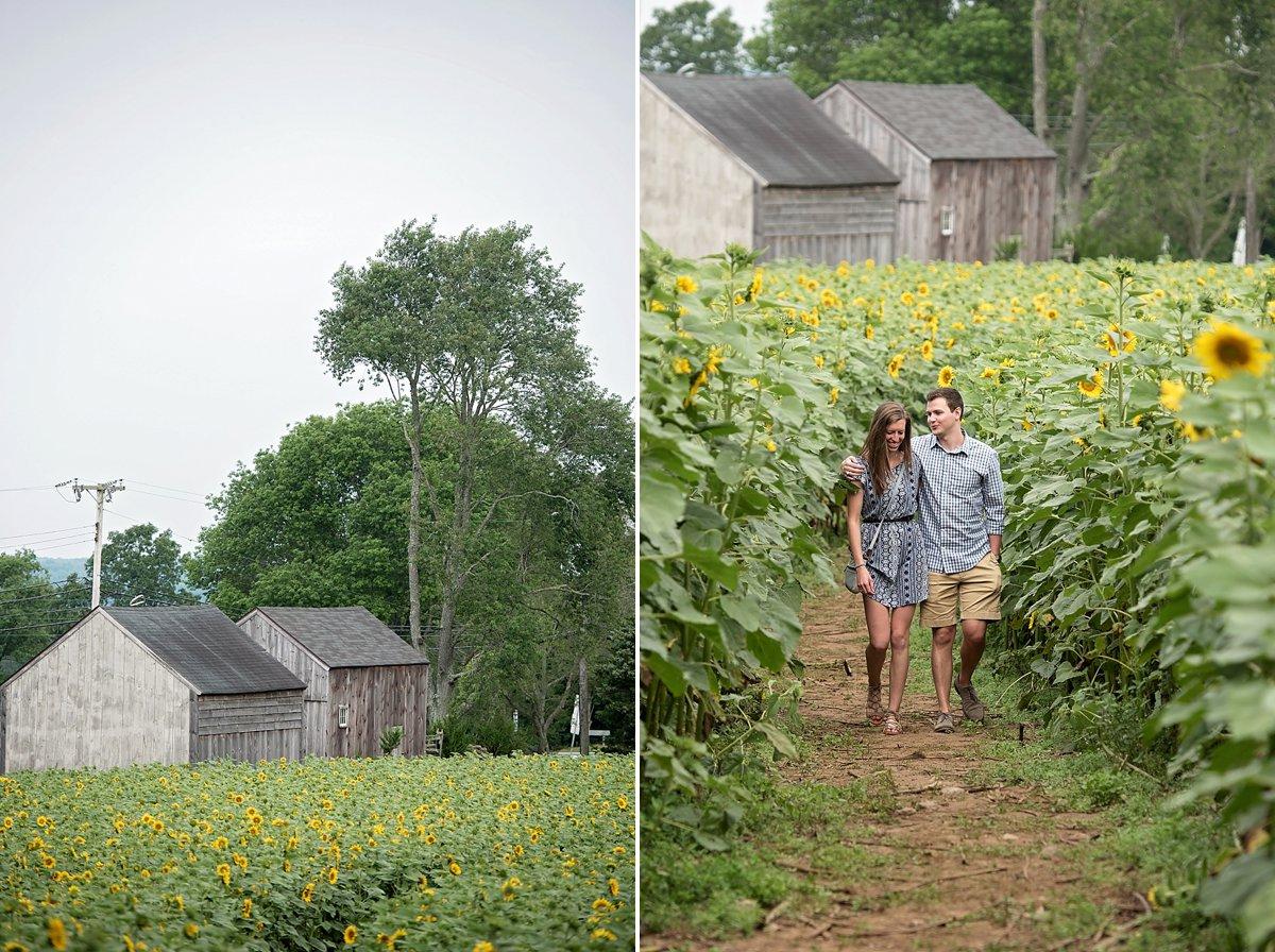Buttonwood Farm Proposal_0196.jpg
