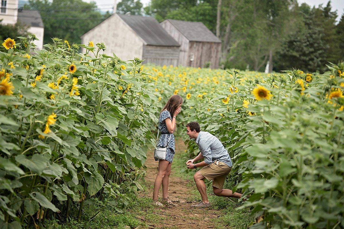 Buttonwood Farm Proposal_0197.jpg