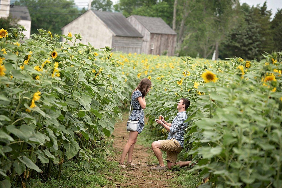 Buttonwood Farm Proposal_0198.jpg