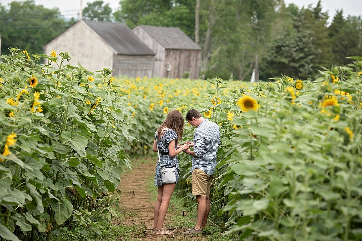 Buttonwood Farm Proposal_0202.jpg