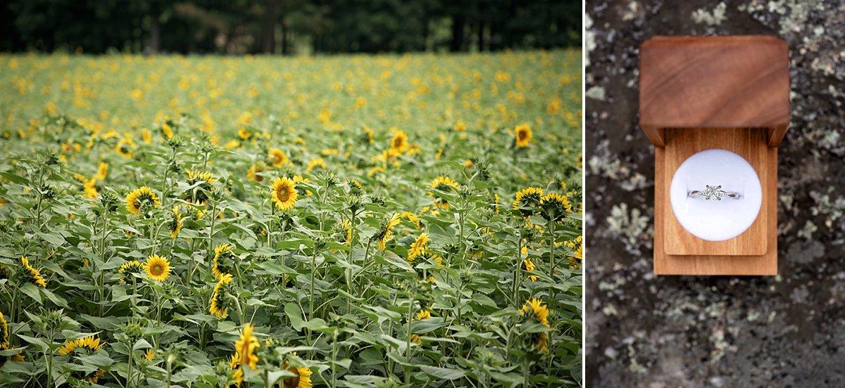 Buttonwood Farm Proposal_0204.jpg