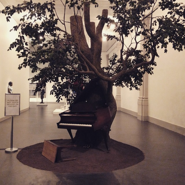 Blossom #brooklynmuseum #sanfordbiggers