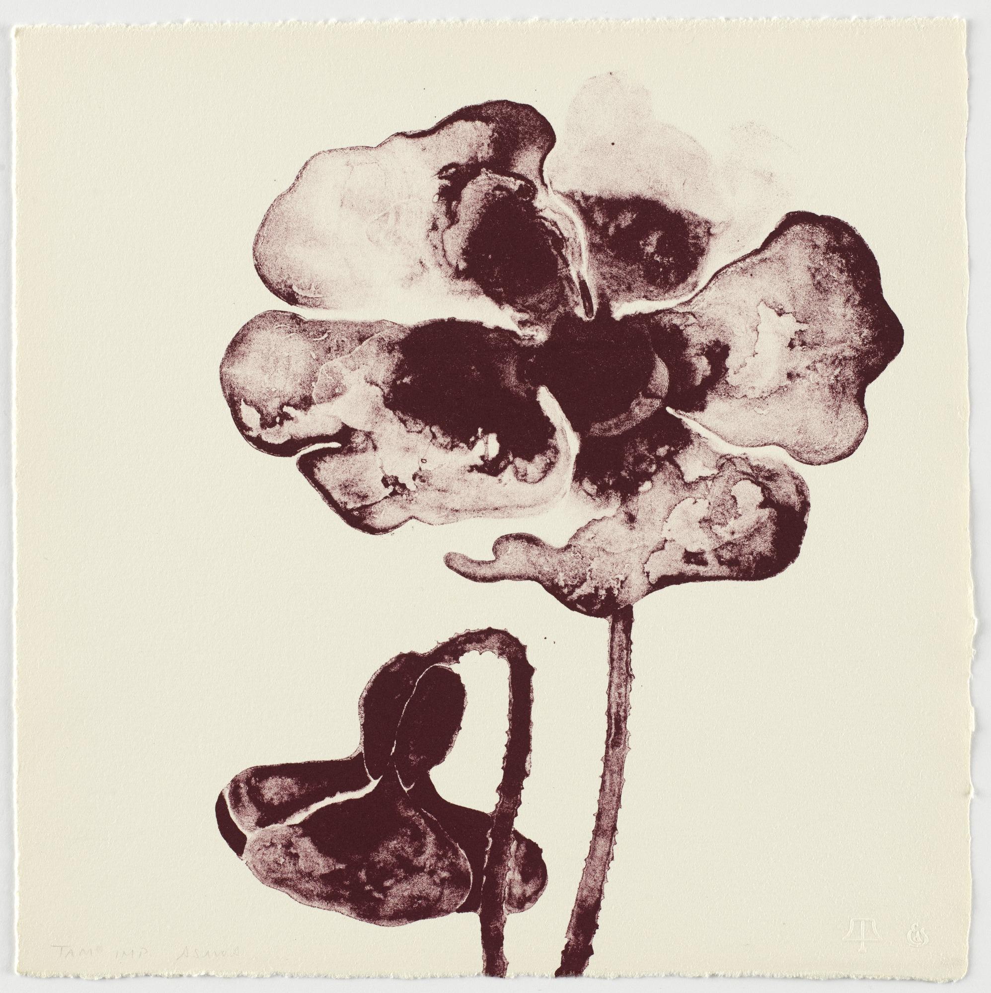 RUTH ASAWA | Untitled (Two Poppies) | 1965