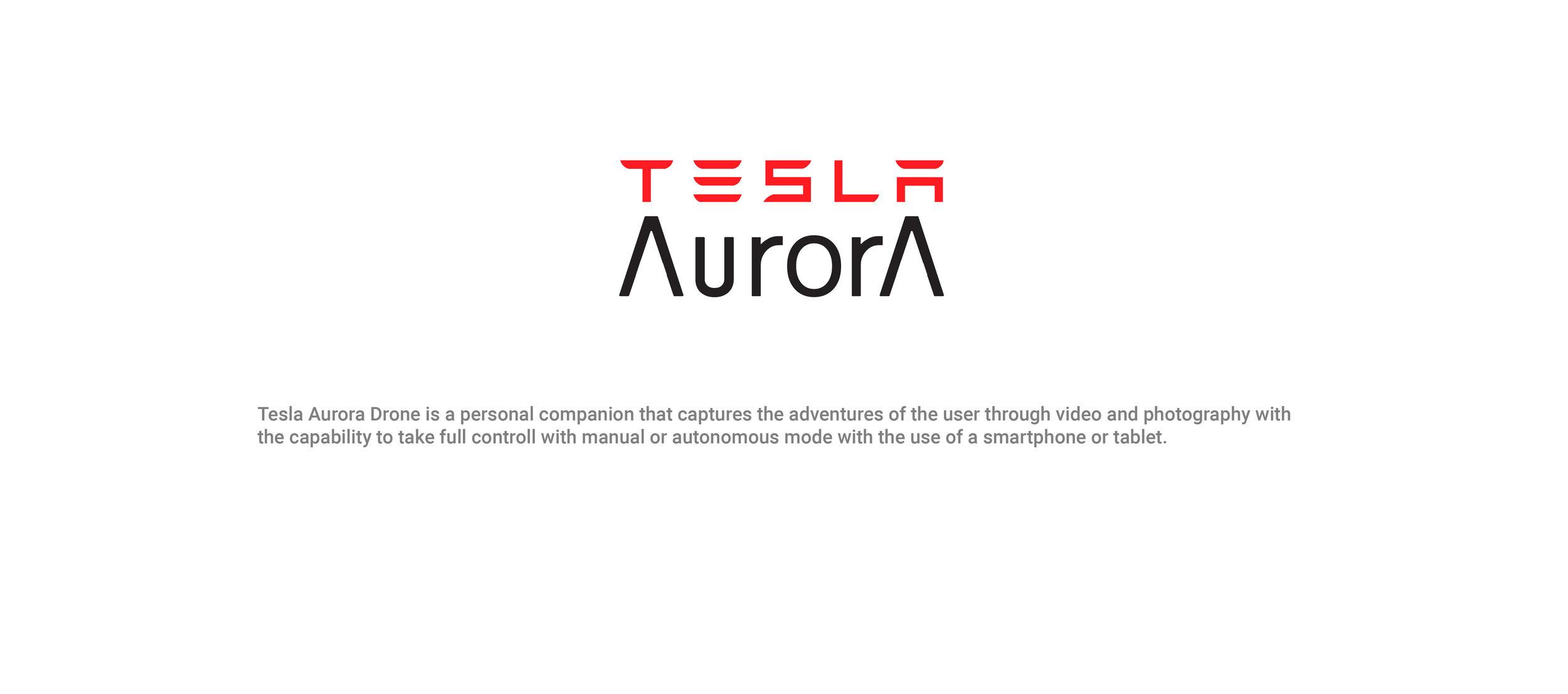 aurora template website-10.jpg