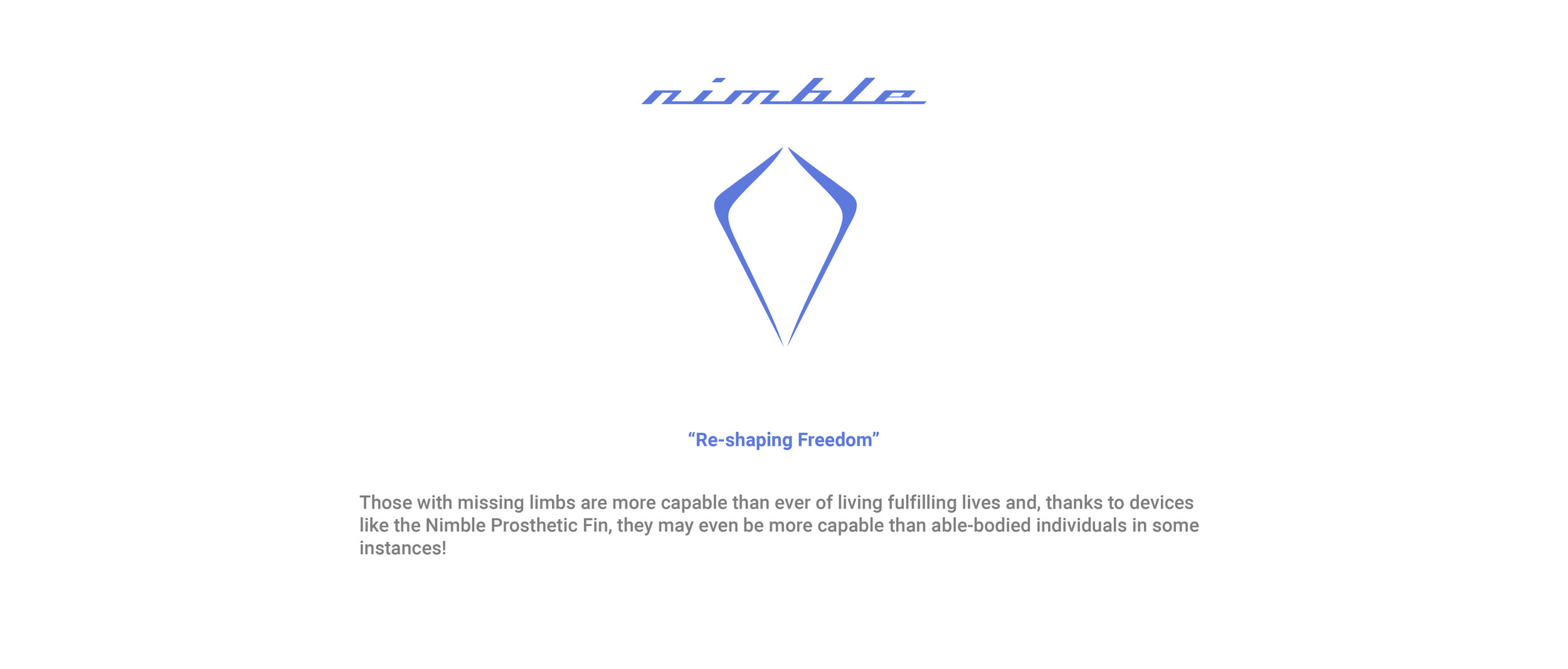 nimble template website-02.jpg