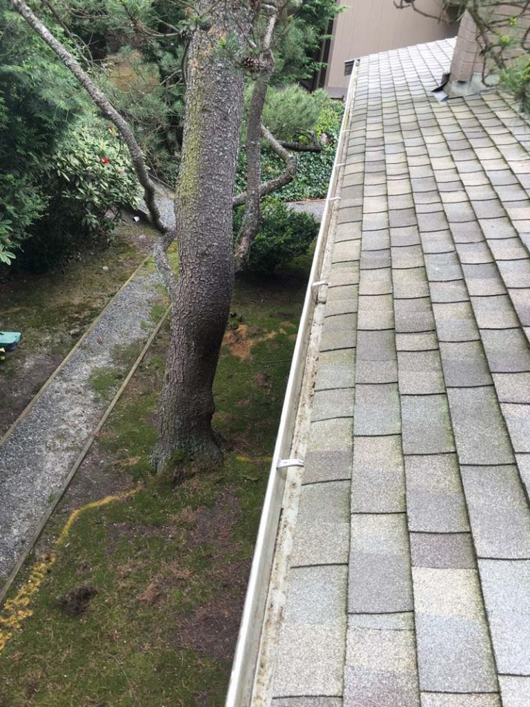 Gutter-Cleaning-Clackamas-OR-768x1024.jpg