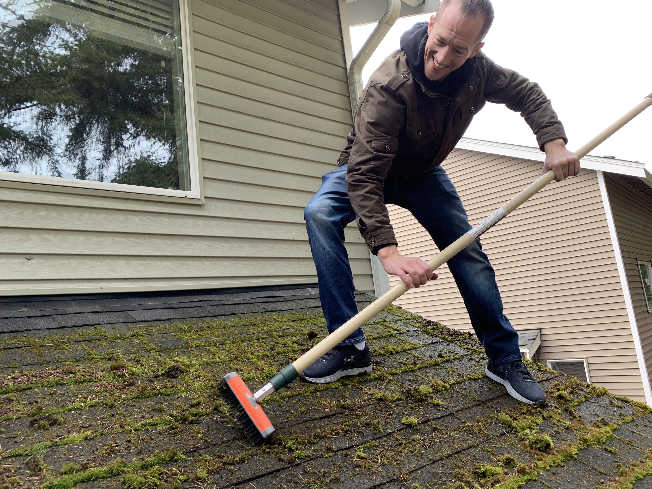 Roof Moss Removal In Redmond