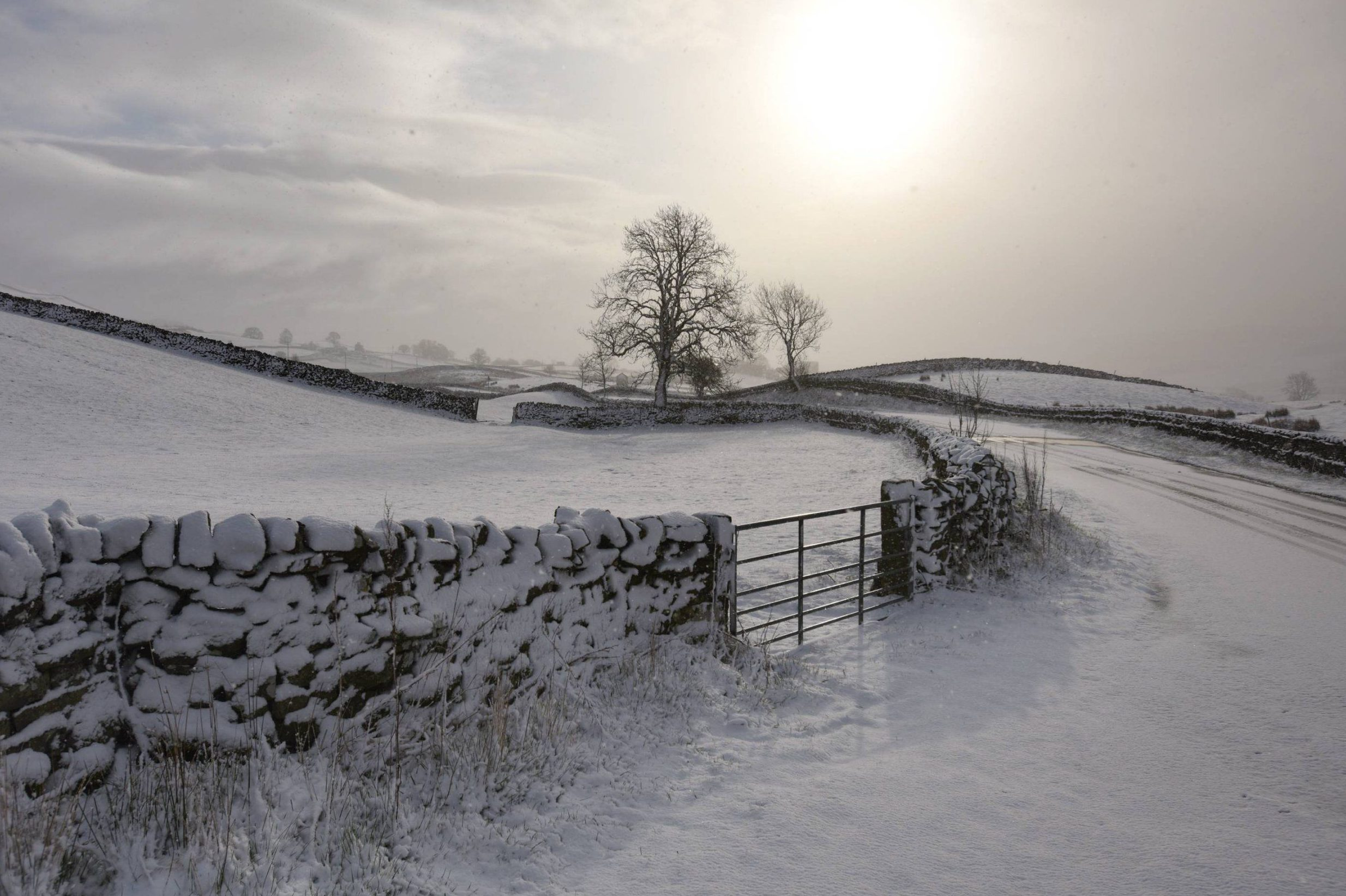 Click  here  to download St Michael's Snow Challenges