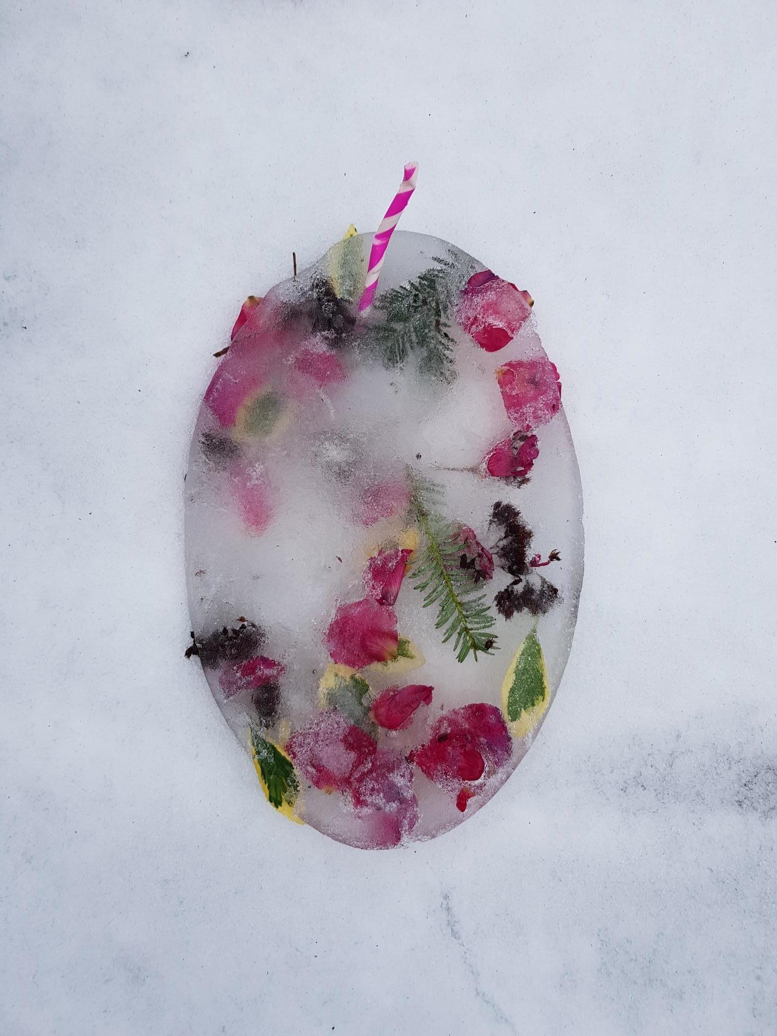 georgia flower 2.jpg