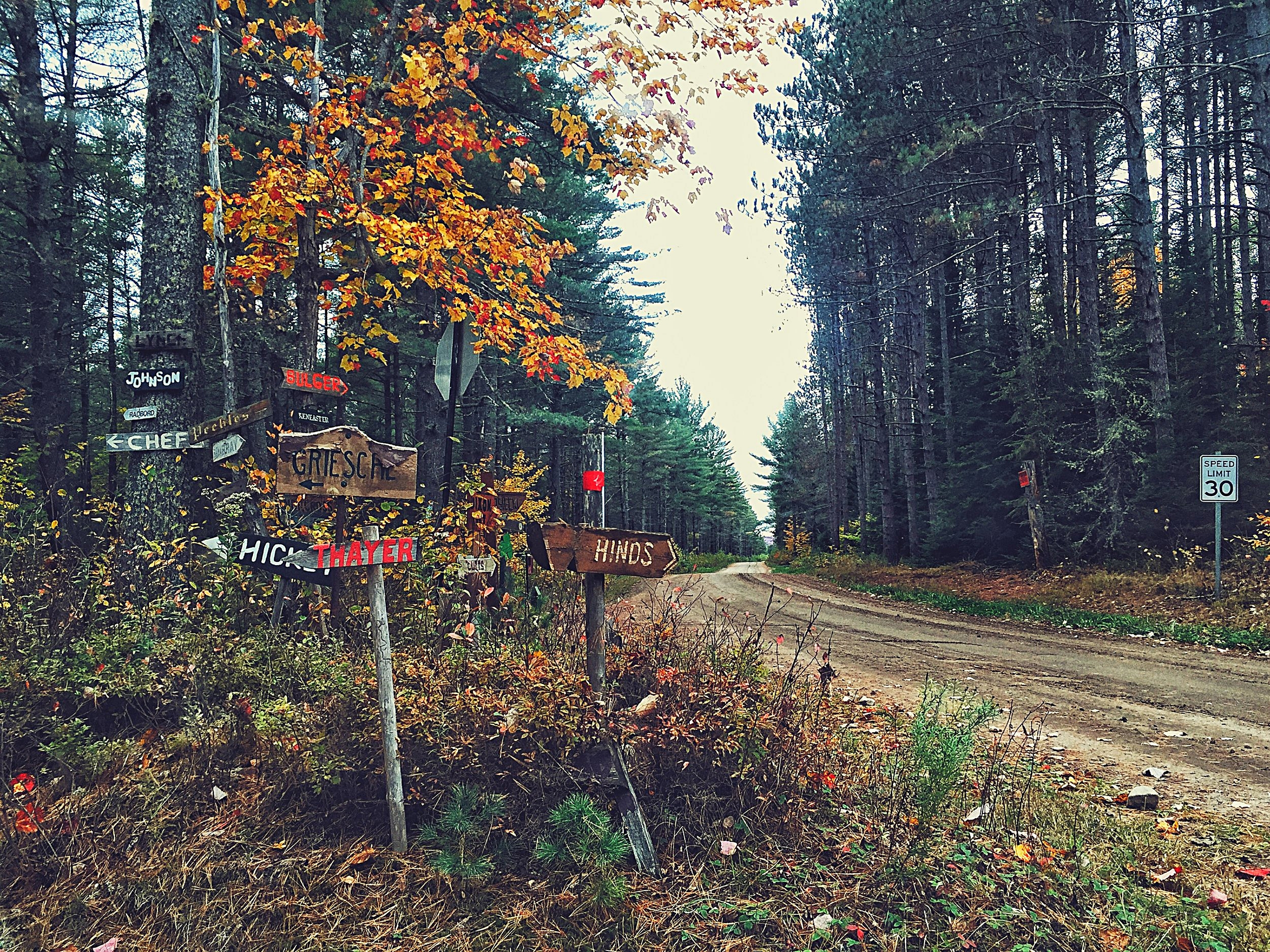 Signs to hunting cabins on the south east side of Mountain View Lake in Adirondack Park.  (Chelsia Rose Marcius/Oct. 9, 2016)