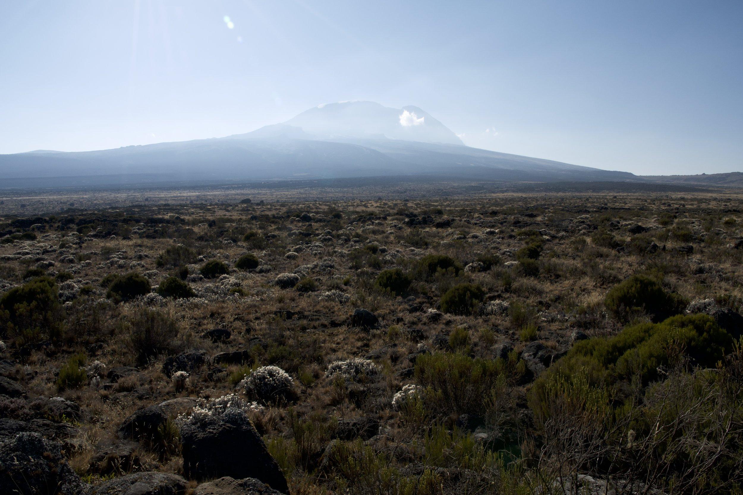Day 4 / Shira Plateau