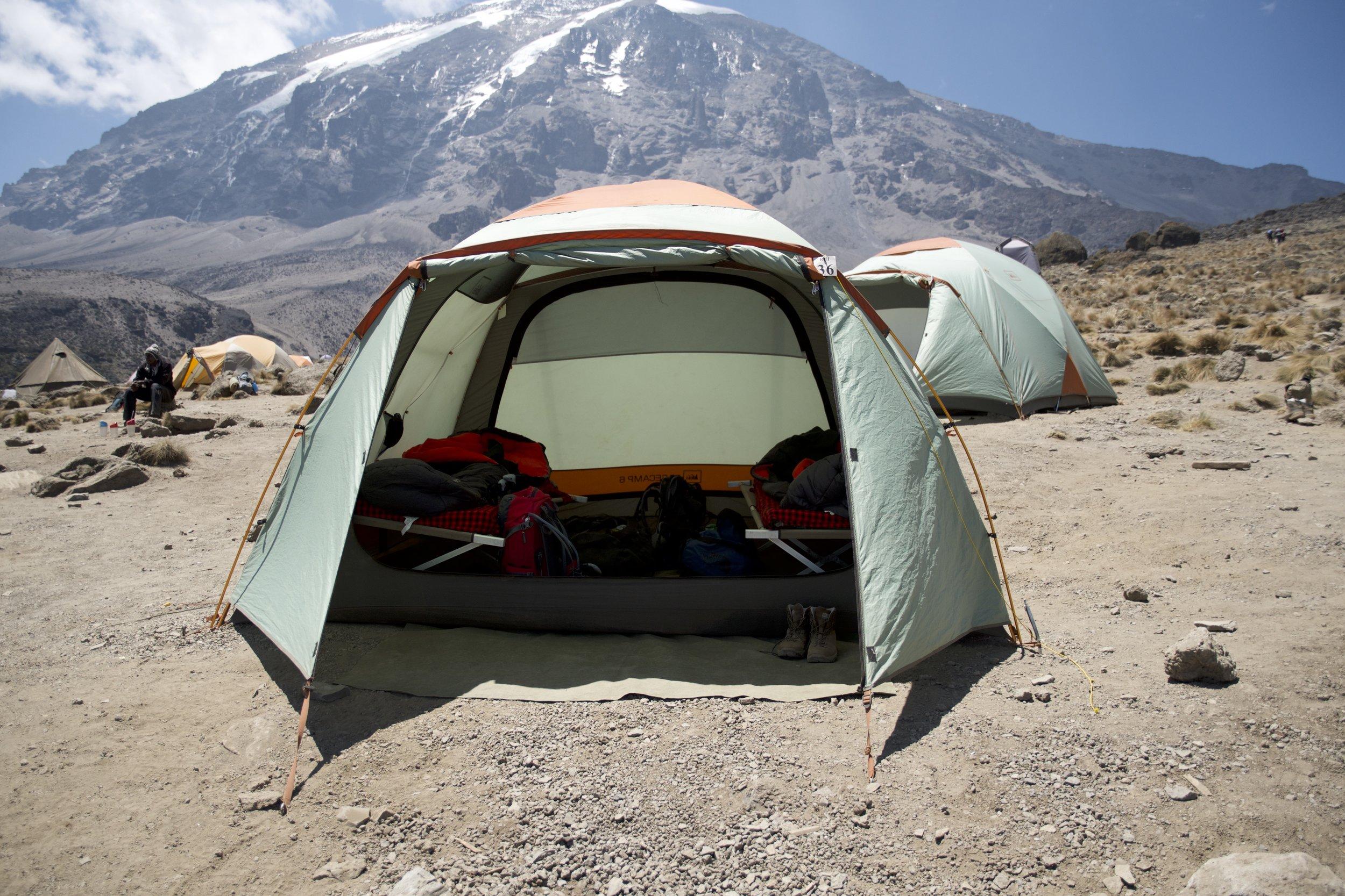 Day 6 / Karanga Camp VIP Walk in Tent