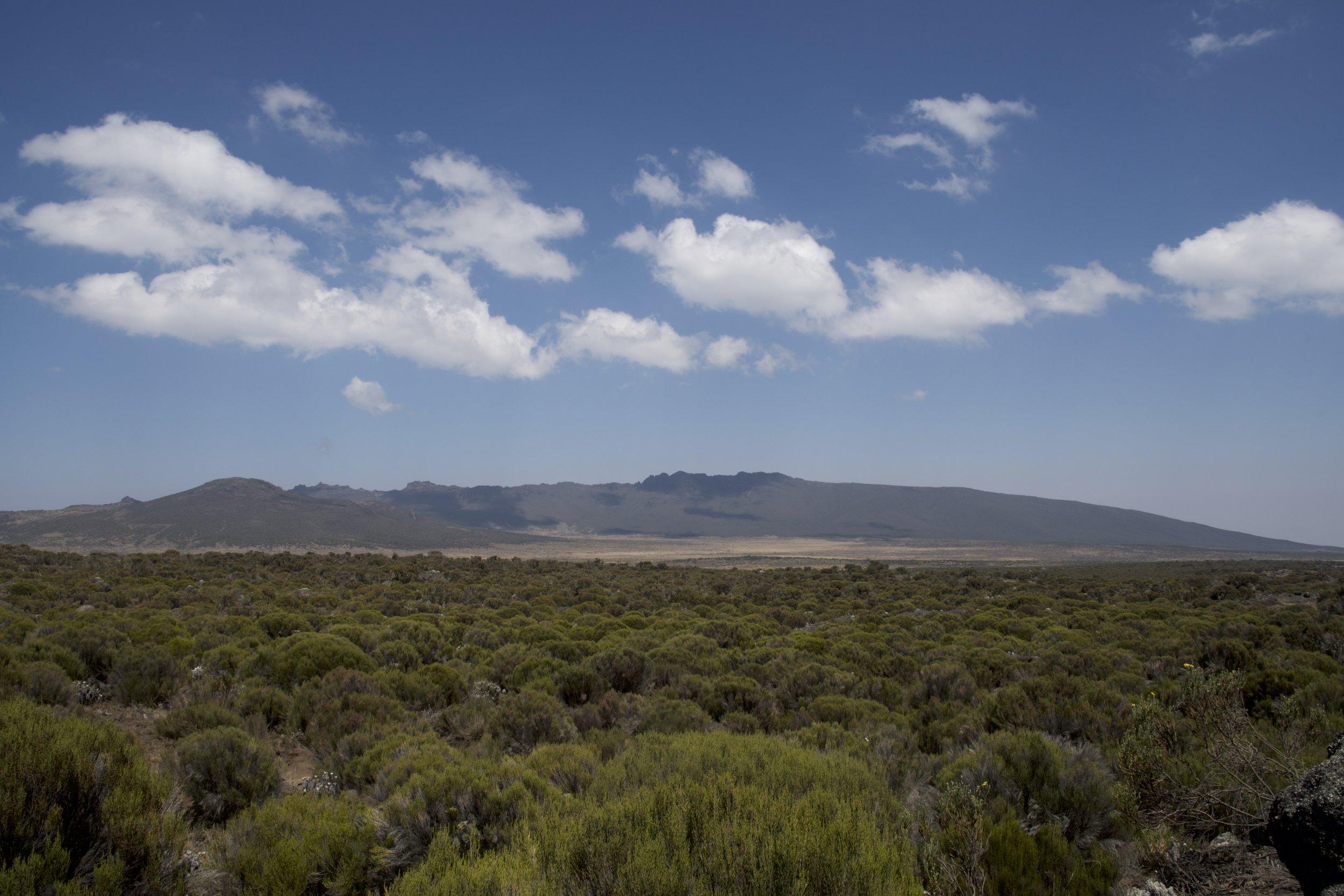 Day 3 / Shira Plateau
