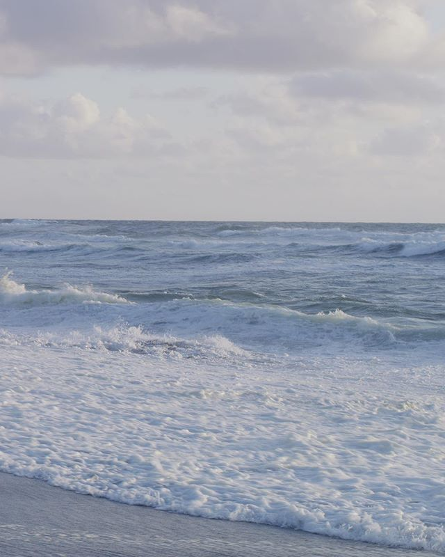 Together we could take a stand.  View the full panorama on my profile, or watch the video in my next post. #Panorama #r3d #movipro #broll #pacific #norcal #bayarea #earthday #beach