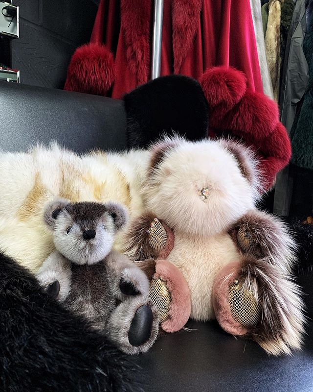 Good morning~ hope you all have a good day ❤️ Igor and Milly 🐻#positiveenergy #positivevibes #teddybears #collection #fur #furlove #showroom #goodmorning #igdaily #igo #muchlove_ig