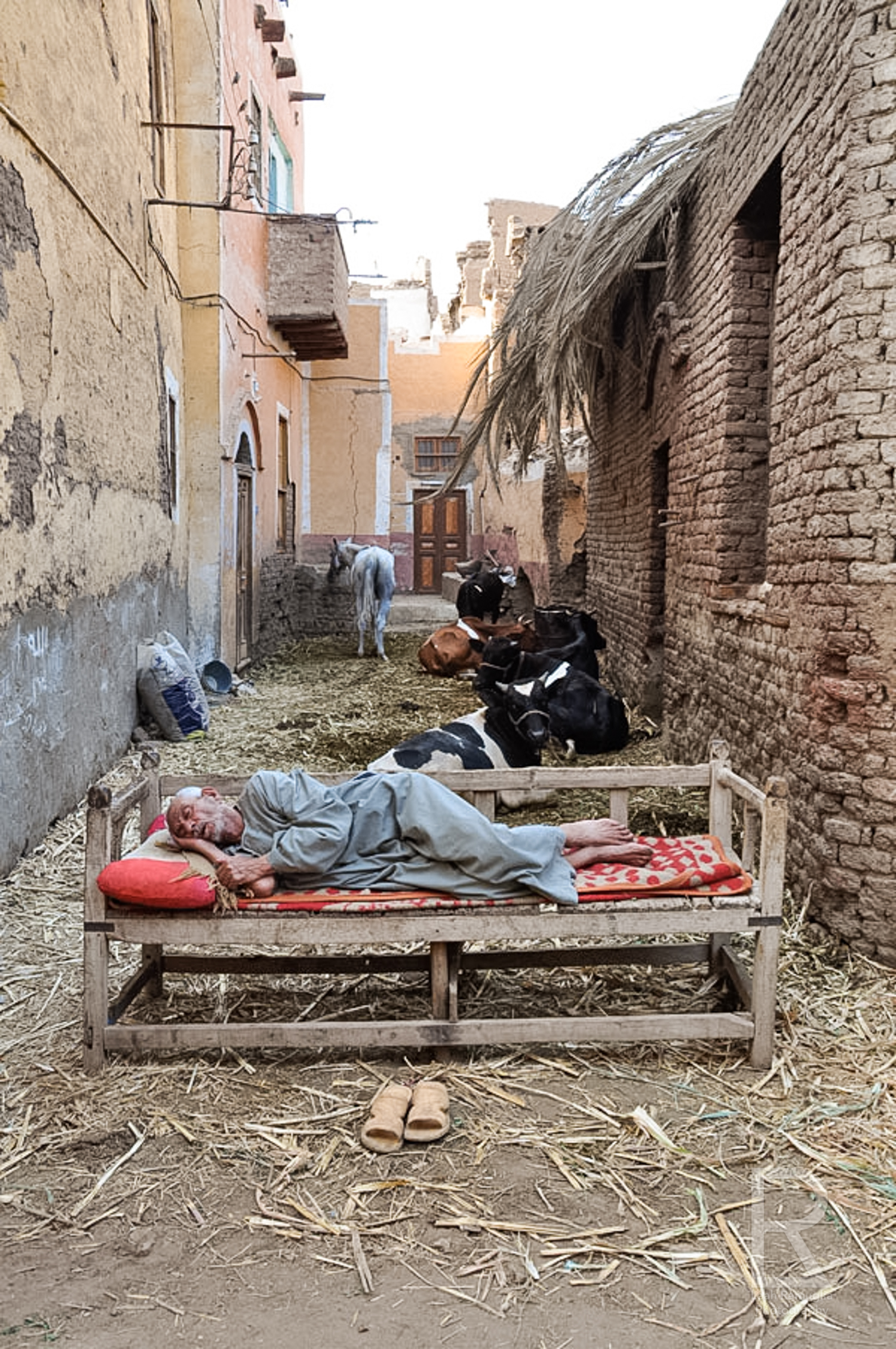 2440 man sleeping in esna.jpg