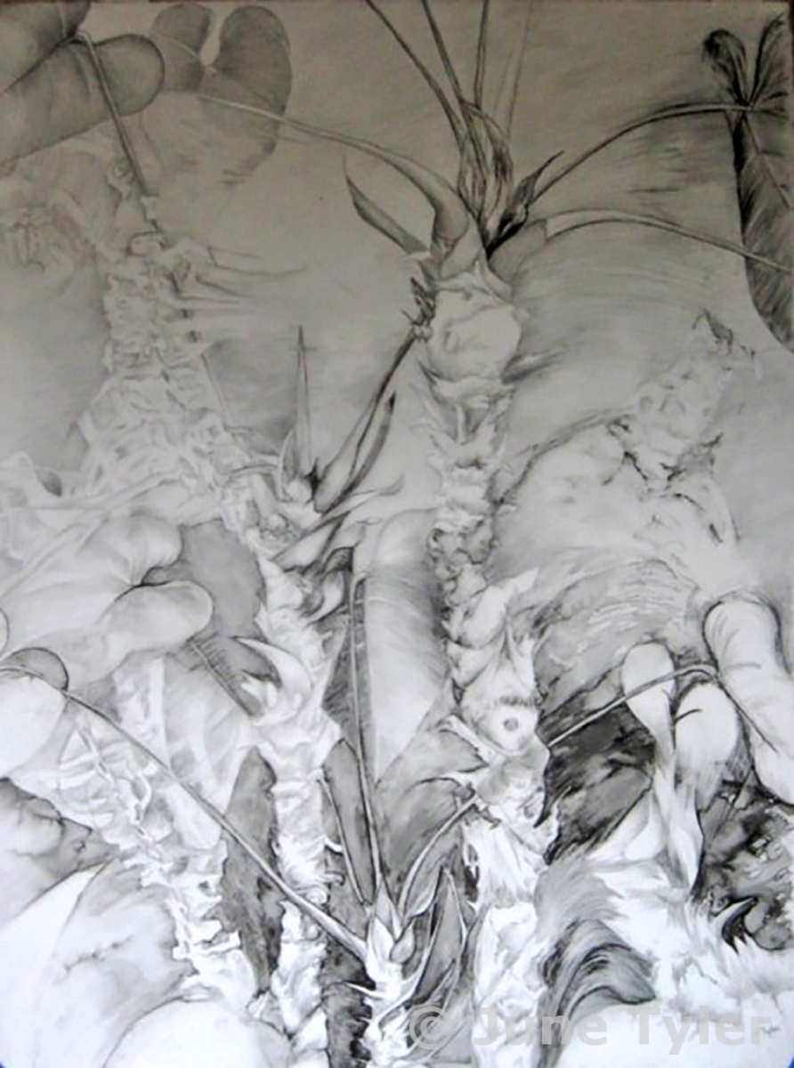 """Comparable Stuctures II"" 30"" x 22"" Drawing on lexan"