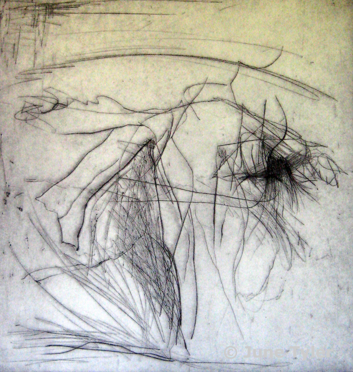 "Dress Rehearsal for ""Aviary"" Nikolais Dancers 1979 Drypoint Monoprint 13.25"" x 12.75"""