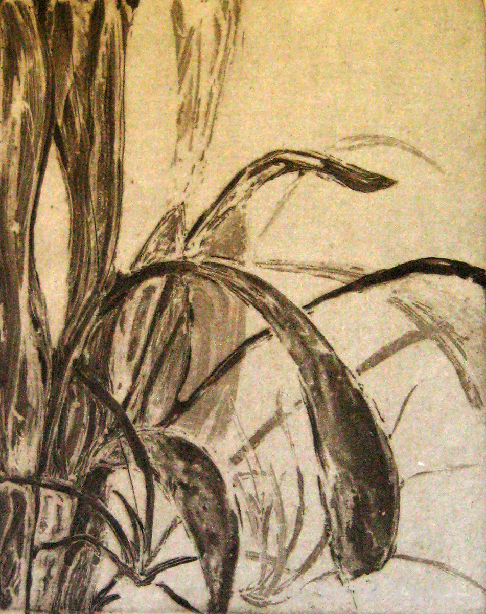 """""""Leaves"""" 2009 Intaglio 4/25 on handmade flax paper 11"""" x 8.5"""" (Image size)"""