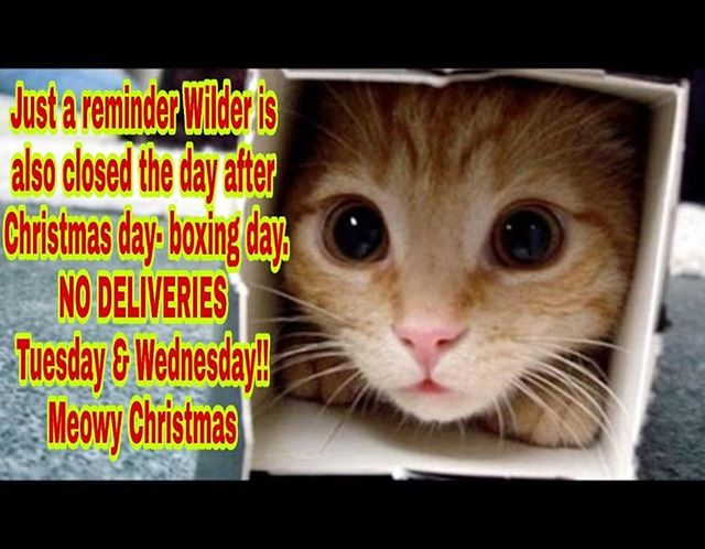 Meowy Christmas!!! Wilder will be back Thursday!!!!...that's right  closed Tuesday and Wednesday