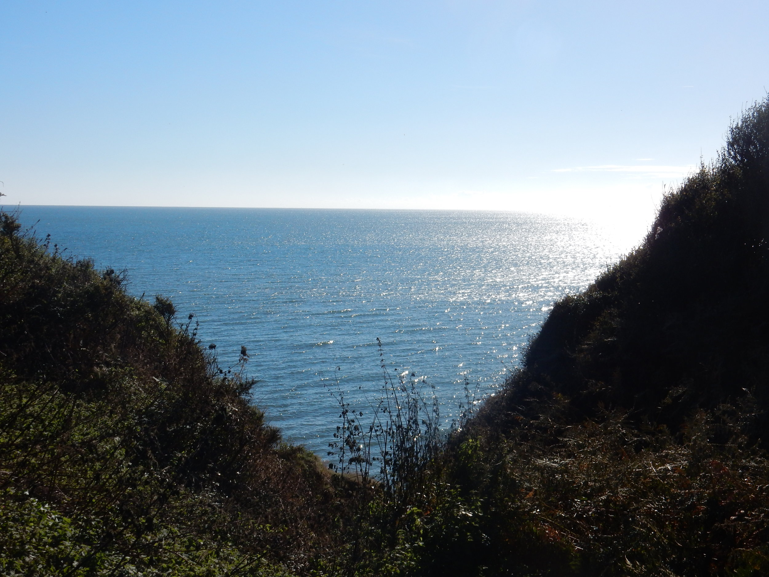 photography friday jurassic coast devon