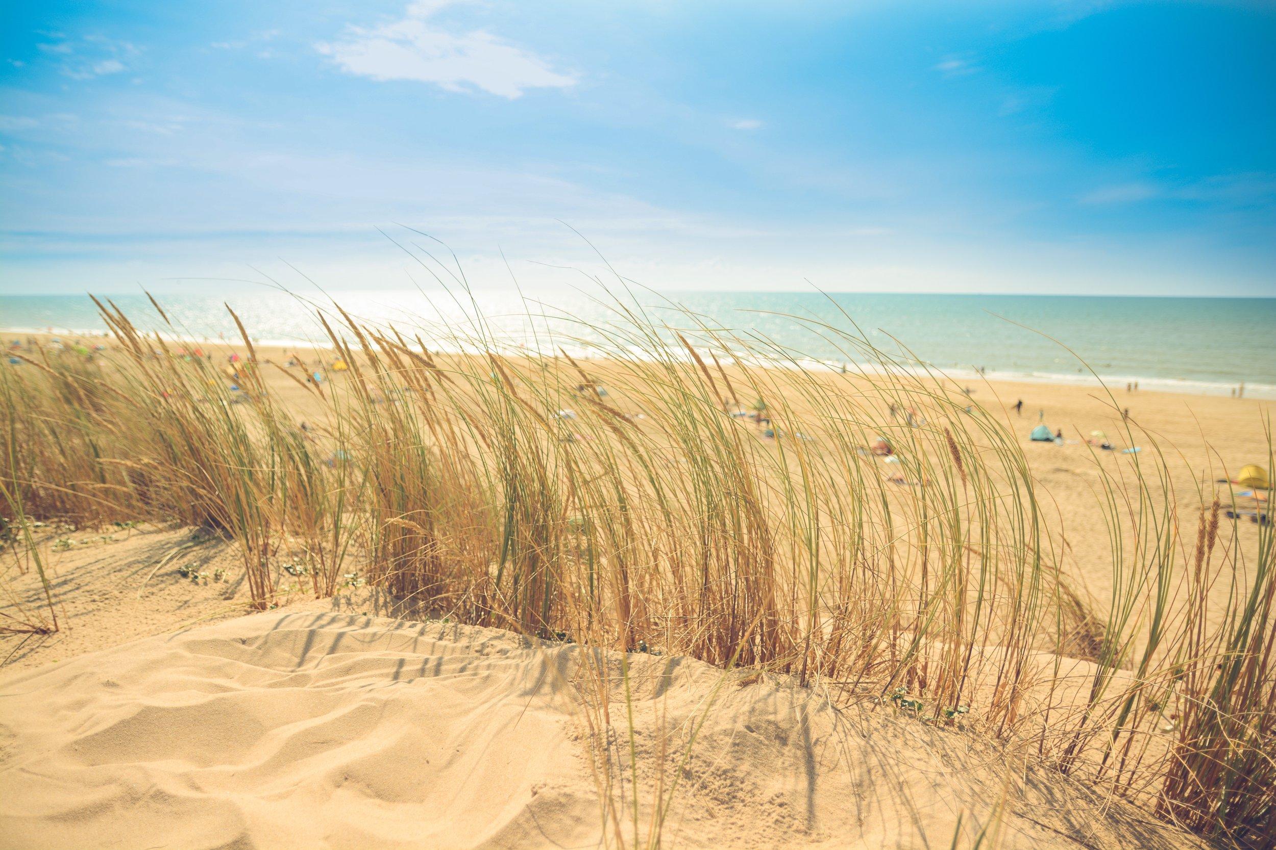 beach-dune-holiday-9537.jpg