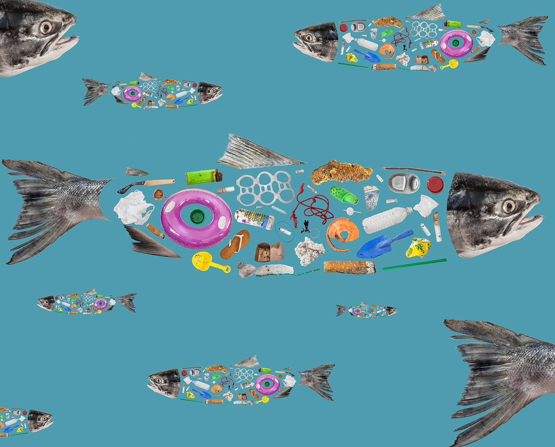 Litter Fish    2017  public art commission